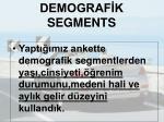 demograf k segments