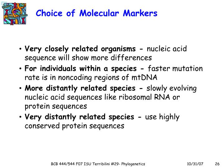 Choice of Molecular Markers