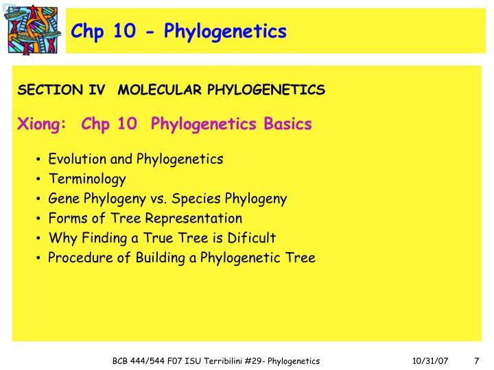 Chp 10 - Phylogenetics