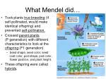 what mendel did
