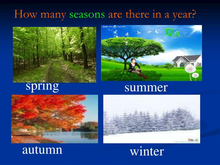 how many seasons for how to get