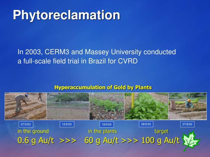 Phytoreclamation