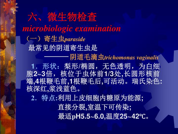 六、微生物检查