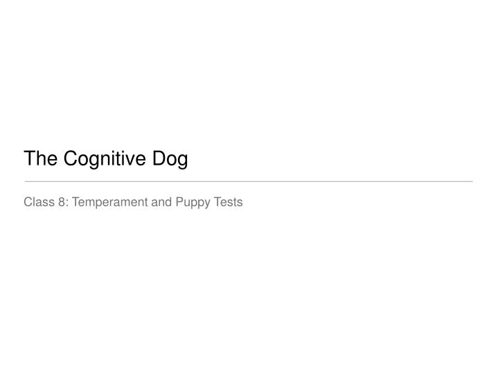 the cognitive dog n.