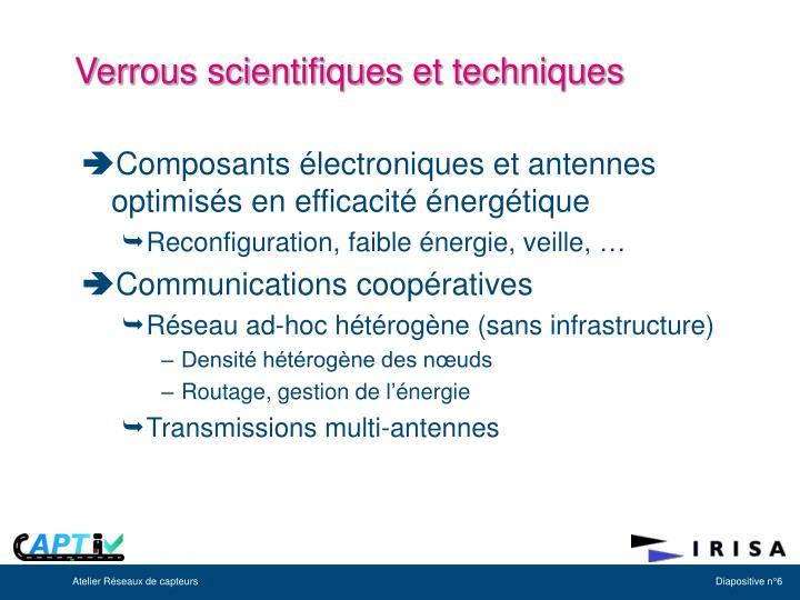 Verrous scientifiques et techniques