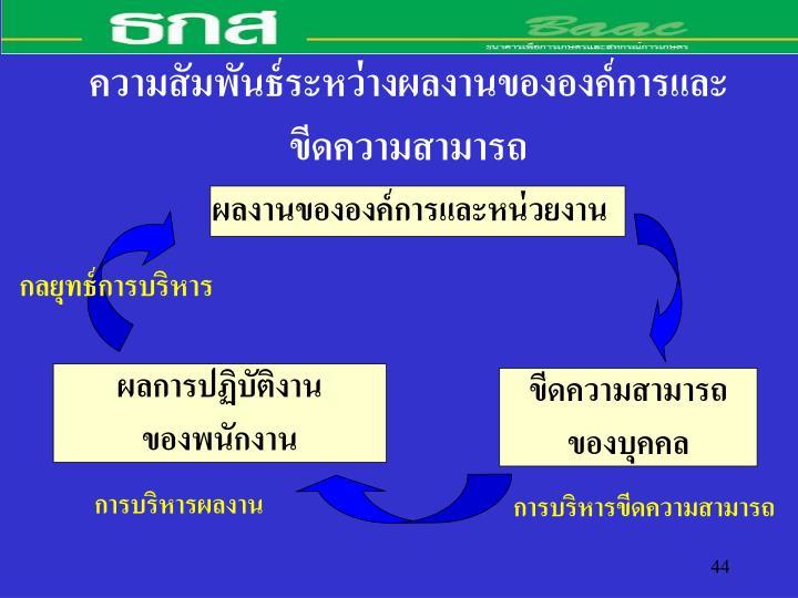 ความสัมพันธ์ระหว่างผลงานขององค์การและ