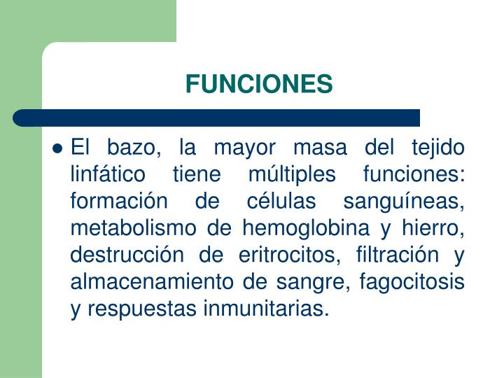 PPT - BAZO PowerPoint Presentation - ID:3819452