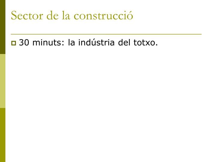 Sector de la construcció
