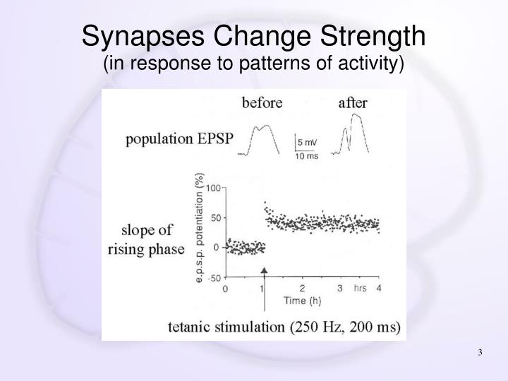 Synapses change strength in response to patterns of activity