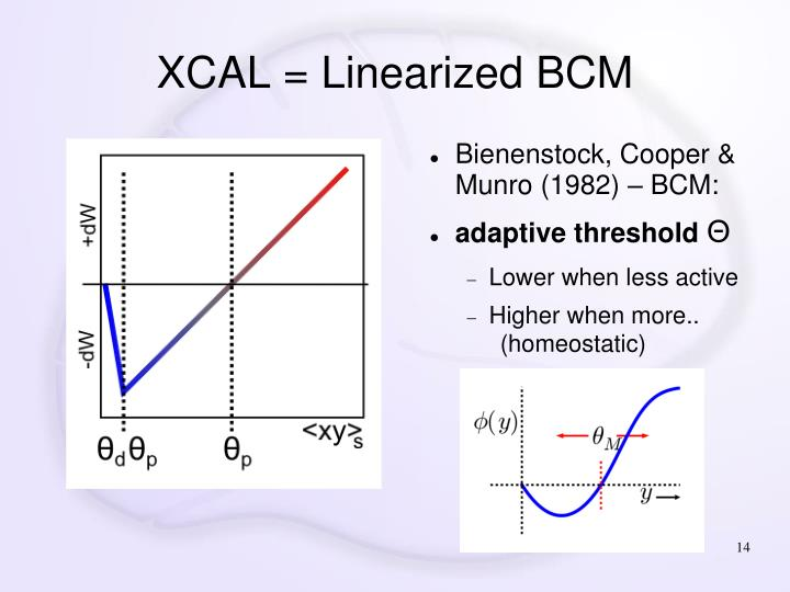 XCAL = Linearized BCM