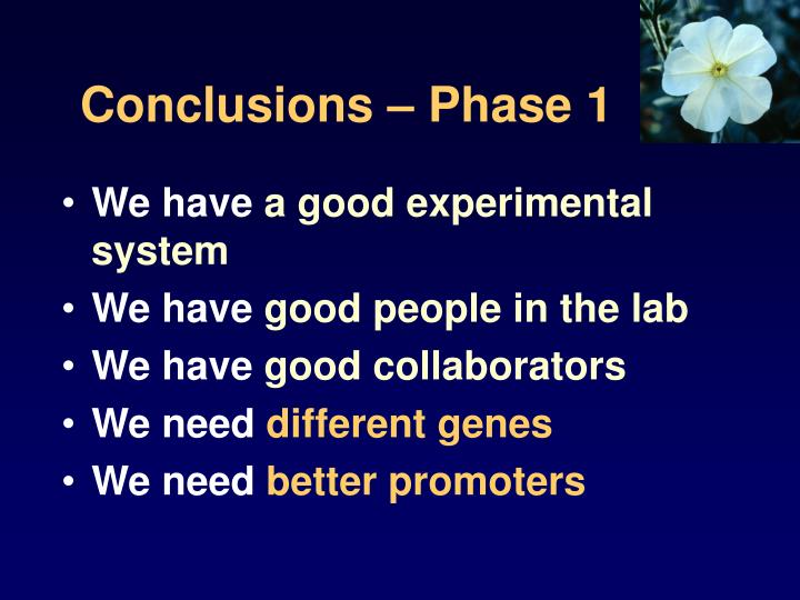Conclusions – Phase 1