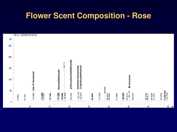 Flower Scent Composition - Rose