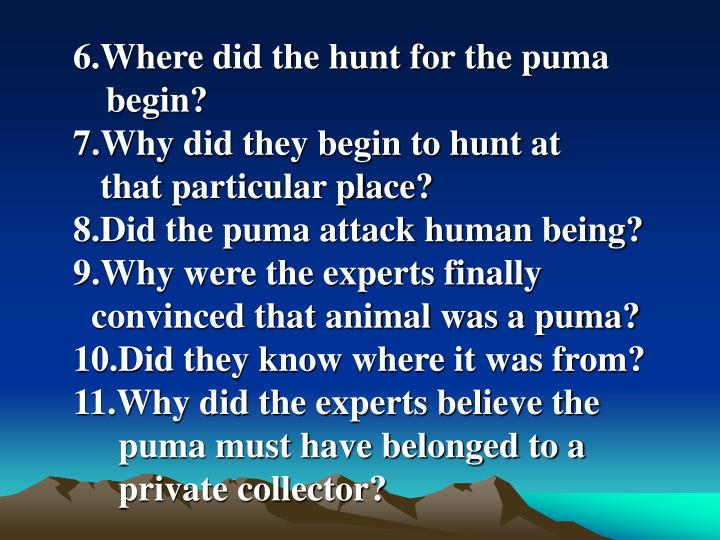 6.Where did the hunt for the puma