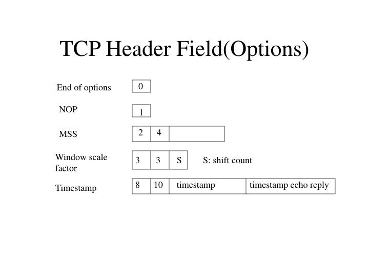 TCP Header Field(Options)