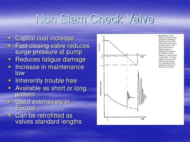 Non Slam Check Valve