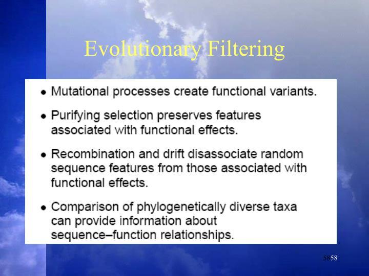 Evolutionary Filtering