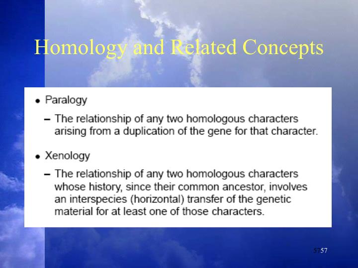 Homology and Related Concepts