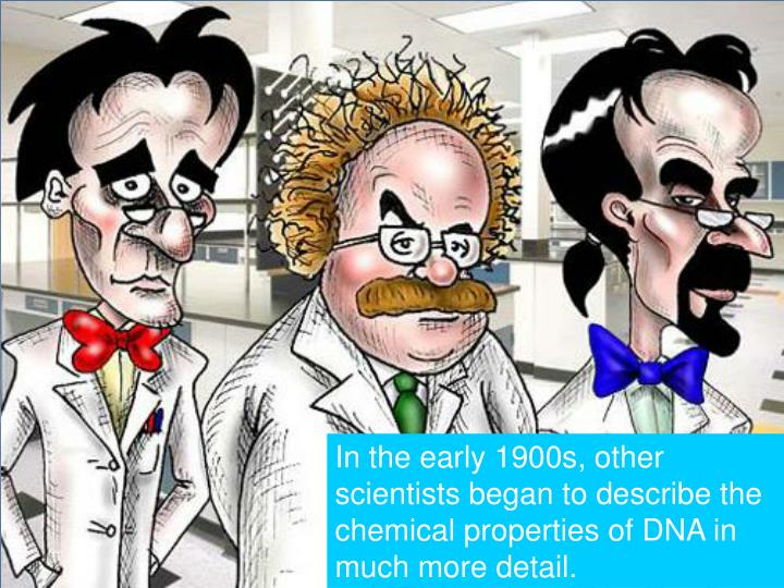 In the early 1900s, other scientists began to describe the chemical properties of DNA in much more detail.