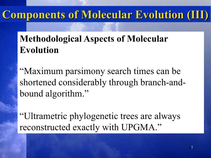 Components of Molecular Evolution (III)