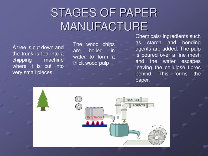 stages of paper manufacture n.