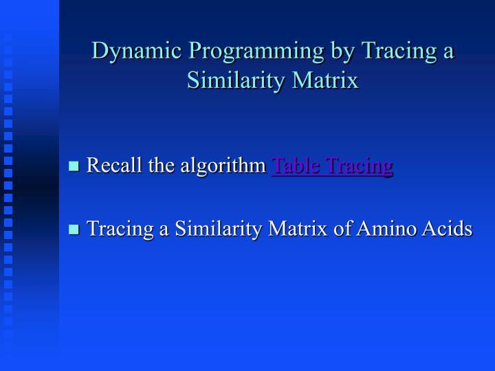 Dynamic Programming by Tracing a Similarity Matrix