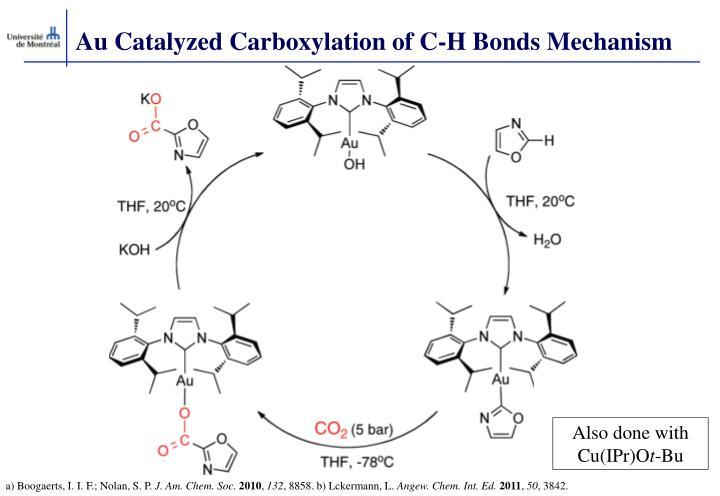 Au Catalyzed Carboxylation of C-H Bonds Mechanism