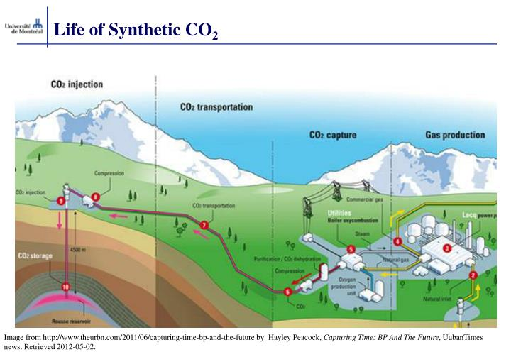 Life of Synthetic CO