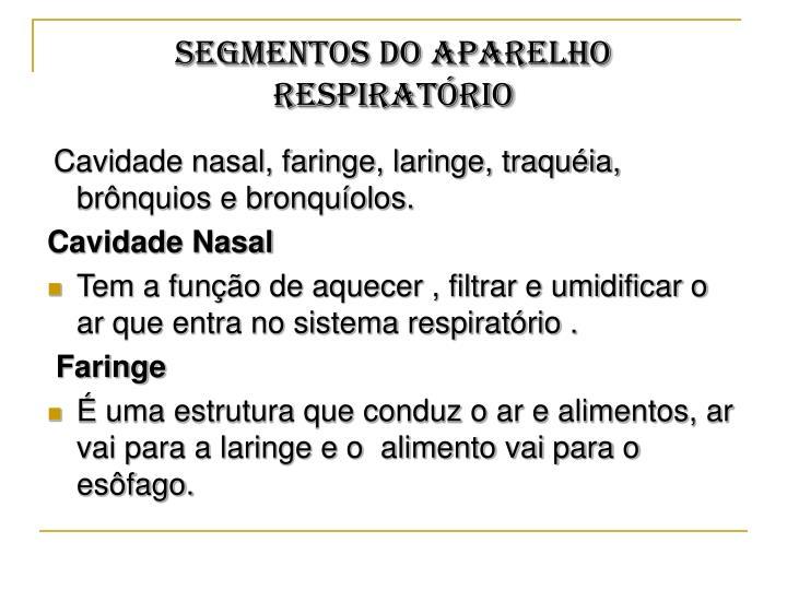 SEGMENTOS DO APARELHO