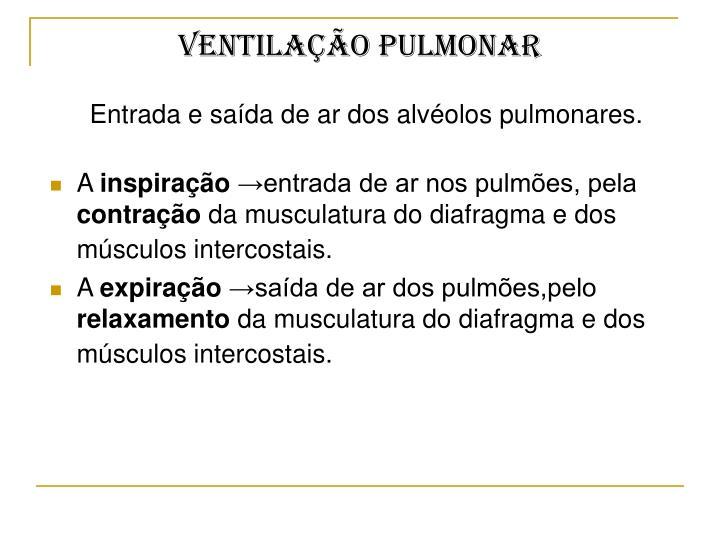 Ventilação pulmonar