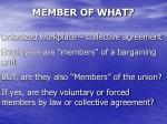 member of what