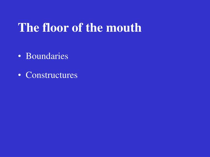 The floor of the mouth