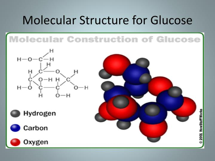 Molecular Structure for Glucose