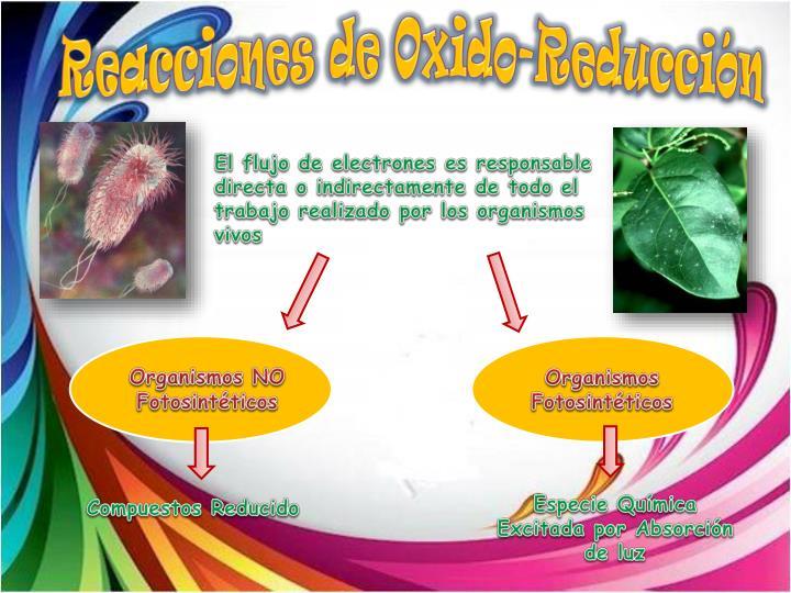 Reacciones de Oxido-Reducción