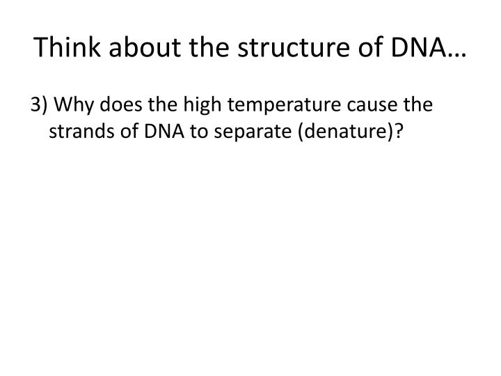 Think about the structure of DNA…