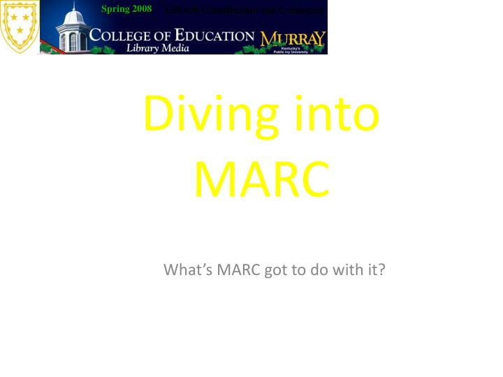 diving into marc n.