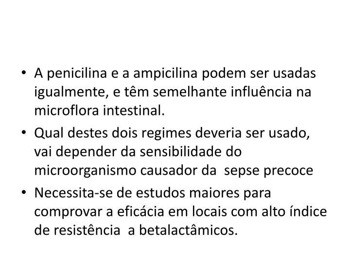 A penicilina e a ampicilina podem ser usadas igualmente, e têm semelhante influência na microflora intestinal.