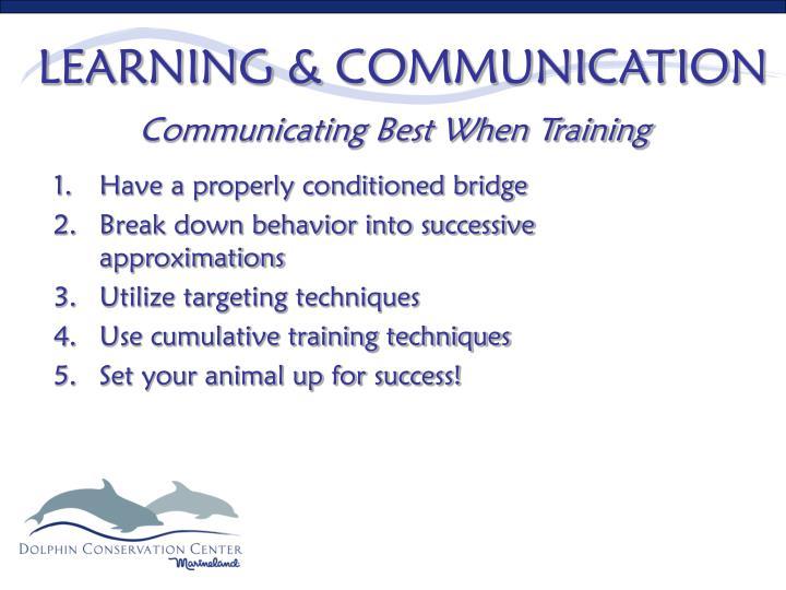 LEARNING & COMMUNICATION