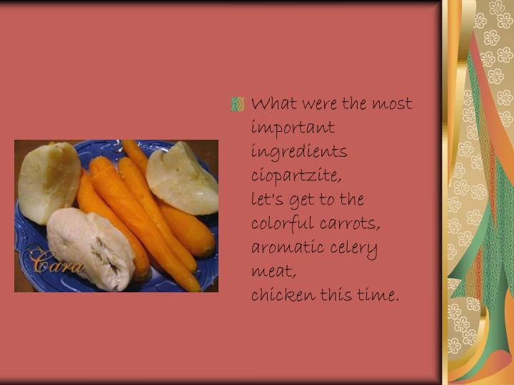 What were the most important ingredients ciopartzite,