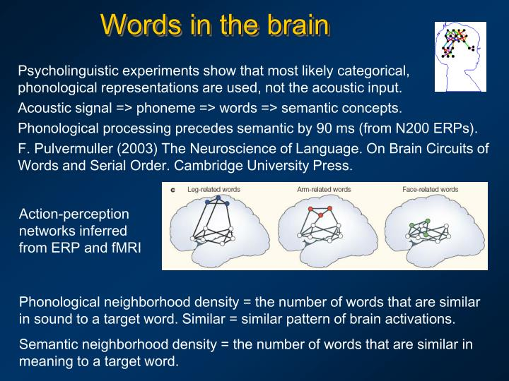 Words in the brain