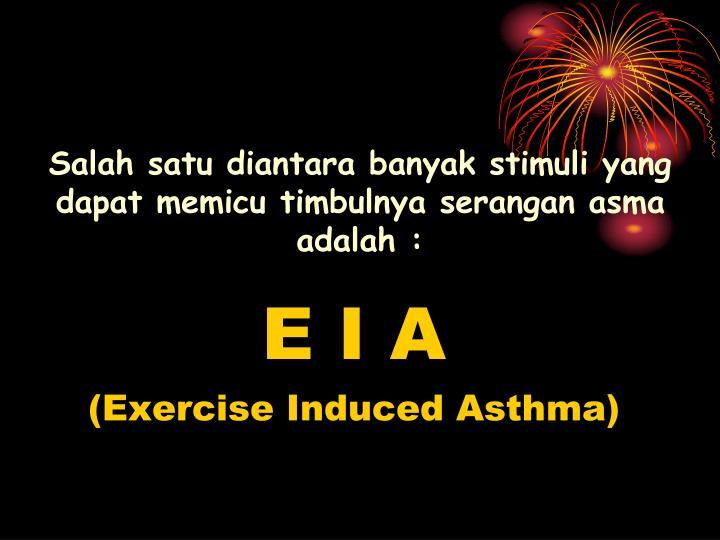 Salah satu diantara banyak stimuli yang dapat memicu timbulnya serangan asma adalah :