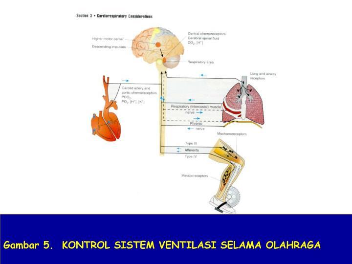 Gambar 5.  KONTROL SISTEM VENTILASI SELAMA OLAHRAGA