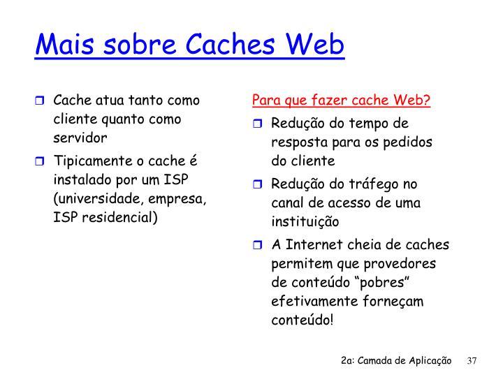 Cache atua tanto como cliente quanto como servidor