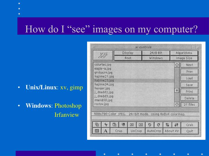 "How do I ""see"" images on my computer?"
