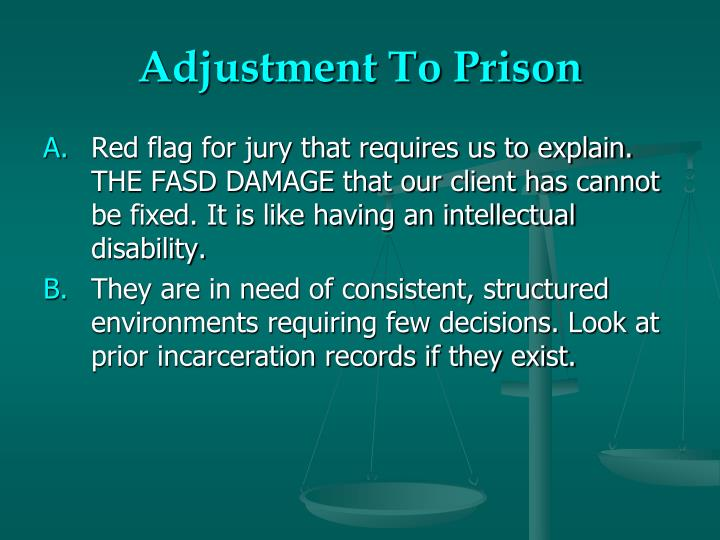 Adjustment To Prison
