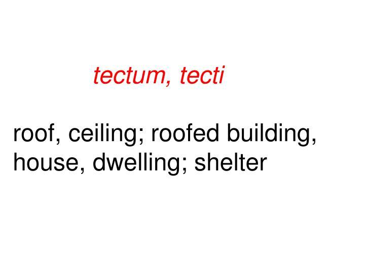 tectum, tecti