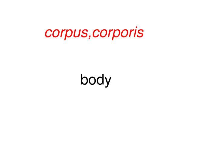 corpus,corporis