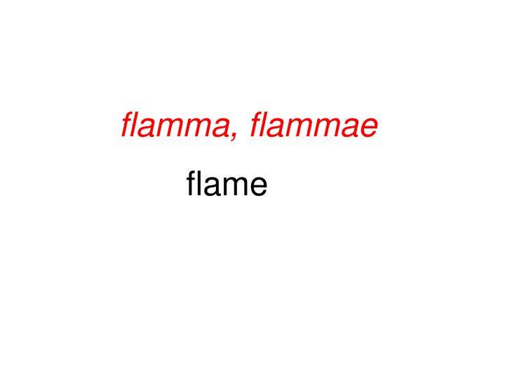 flamma, flammae