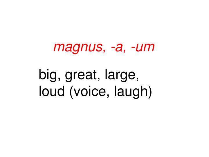 magnus, -a, -um