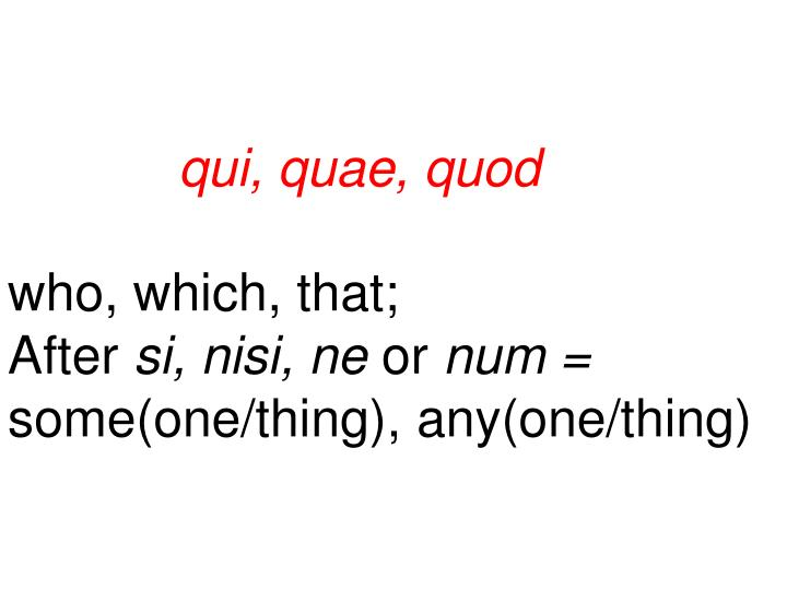 qui, quae, quod
