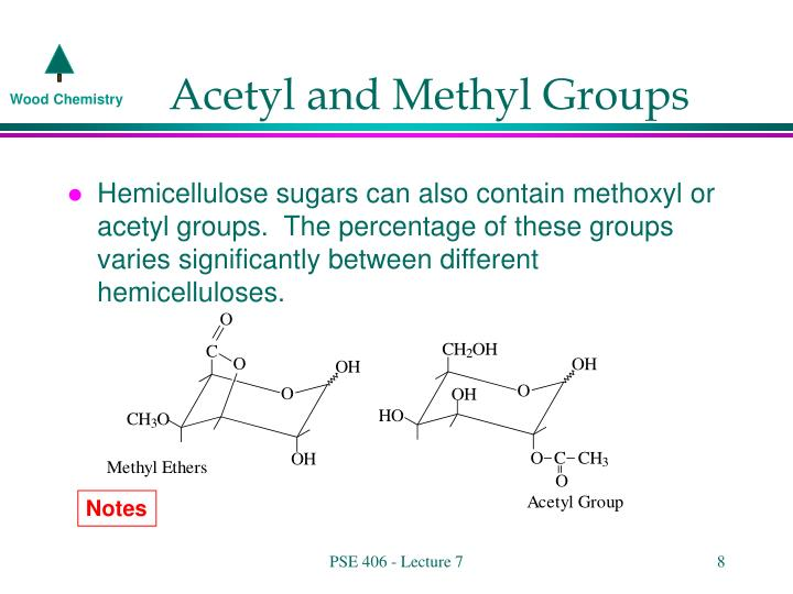 Acetyl and Methyl Groups